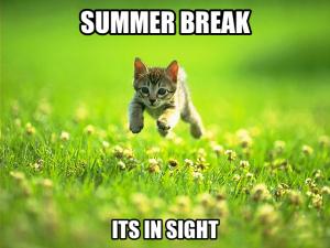 Summer-memes-for-whatsapp